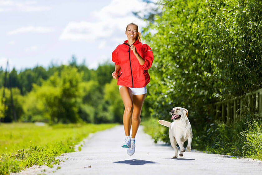 Apps For A Healthy Dog