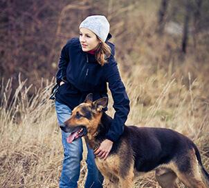 Dog-Training-Sydney-1