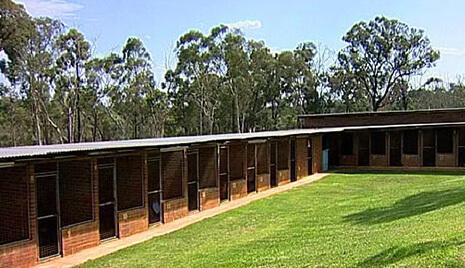 Dog-Training-Sydney-kennels