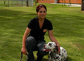 girl training dog